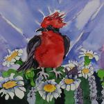 """Vermilion Flycatcher""  10x13   SOLD"