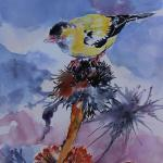 """Goldfinch on a Thistle""  20x16"
